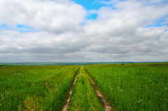 Dirt road on the green field to the horizon Royalty Free Stock Images