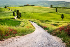 Dirt road and green field in Tuscany. Italy Stock Images