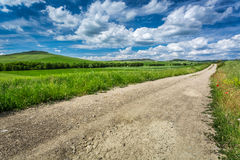 Dirt road between green fields. Italy Stock Photography