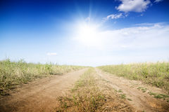 Dirt road through the green fields. Royalty Free Stock Photos