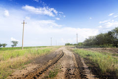 Dirt road through the green fields. Royalty Free Stock Photo