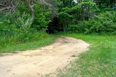 Dirt road in green forest Royalty Free Stock Photography