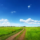Dirt road in green summer field Stock Photography
