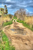 Dirt road in hdr Royalty Free Stock Photography
