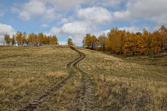 A dirt road on the hill Stock Images