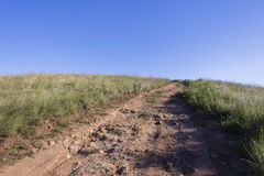 Dirt Road Hilltop. Dirt road track through grass fields to hilltop Royalty Free Stock Image