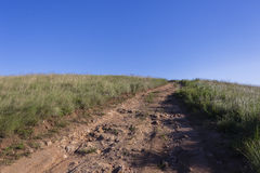 Dirt Road Hilltop. Dirt road track through grass fields to hilltop Stock Photography