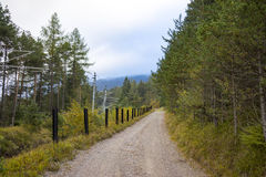 Dirt Road and Hydro Line in Forested Area. Scenic View of Dirt Single Lane Road Running Through Lush Forest Area Divided by Fence Posts and Hydro Electric Line Royalty Free Stock Images