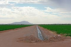 Dirt road and irrigation ditch through the farm fields stock photo