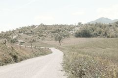 Dirt road in the italian country - Italian Pathways stock image