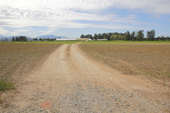Dirt Road Leading to Farm Royalty Free Stock Photo