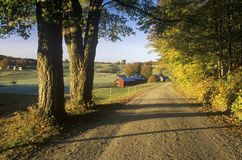 A dirt road leading to Jenne Farm in Vermont Royalty Free Stock Images