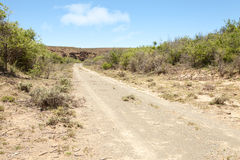 Dirt road leading towards rocky hill in arid region. Dirt road surrounded by vegetation, leading towards rocky hill in arid region Stock Photos