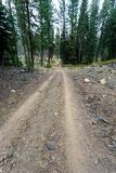 Dirt road leads through Alpine forest to the dormant volcanoes. Dirt road leads through Alpine forest to volcanoes in Lassen Volcanic National Park Stock Image