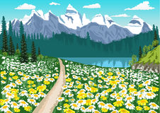 Dirt road in the middle of the chamomile field leading to a mountain lake. Illustration of dirt road in the middle of the chamomile field leading to a mountain Royalty Free Stock Photography
