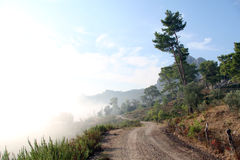Dirt road and mist Stock Photography