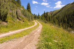 Dirt road in mountains. Dirt road in green mountains at nice sunny summer day stock image