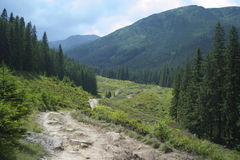 Dirt road between the mountains Royalty Free Stock Image