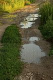 A dirt road in mud and puddles. Pits and puddles on a dirt road with green grass Royalty Free Stock Photography