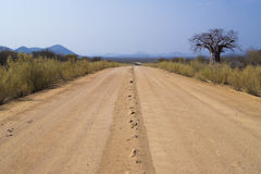 Dirt road in Namibia. With a Boabab tree on the side of the road and mountains in the distance Royalty Free Stock Photography