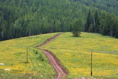 Dirt road through natural landscape Stock Image
