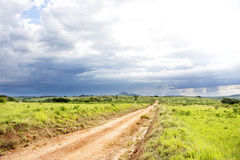 Dirt Road on Nyika Plateau Royalty Free Stock Photography