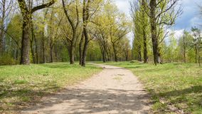 Dirt road in the park on the border between Sosnowiec and Katowice cities. Poland Stock Images