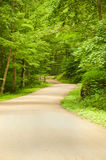 Dirt Road. Path surrounded by trees with vibrant, green leaves Royalty Free Stock Images