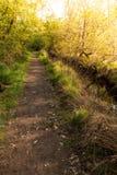 Dirt road pathway in Lagoas de Bertiandos Royalty Free Stock Images