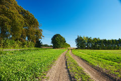 Dirt road - peaceful countryside Royalty Free Stock Photography
