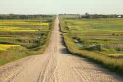A dirt road through the prairie, Canada Royalty Free Stock Photo