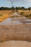 Dirt road puddles Rain Stock Photography