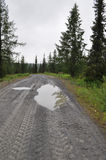 Dirt road after a rain Stock Photography