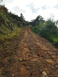 Dirt Road. Remote dirt road at the mountain Stock Image