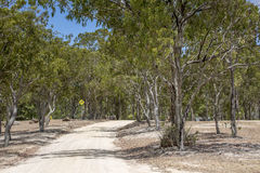 Dirt road at Resevoir lake. Dirt road at reservoir lake in Australia Stock Photos