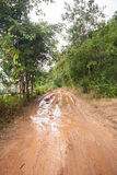 Dirt road in a rural area. Royalty Free Stock Photos