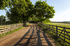Dirt road in the rural area  wooden fence Royalty Free Stock Photo