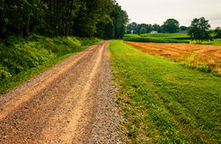 Dirt road in the rural countyside of Southern York County, PA Royalty Free Stock Photos