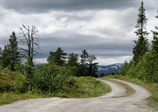 Dirt road through a Rural landscape in Norway Stock Images