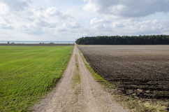 Dirt road in a rural landscpae stock photography