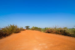 Dirt road in rural of Thailand Royalty Free Stock Image