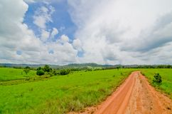 The dirt road on the savanna field leading to the horizon royalty free stock images