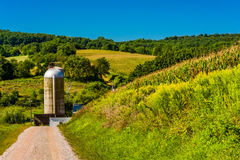 Dirt road and a silo in rural York County, Pennsylvania. Stock Images