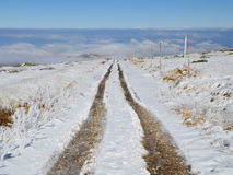 Dirt Road in a Snowy High Mountain Plateau. Sunny day, first snow fallen on Vitosha Mountain plateau. Vehicle tracks on a dirt road Stock Photo
