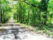 Dirt road in spring of april royalty free stock photo