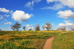 The dirt road through the spring fields Stock Photo
