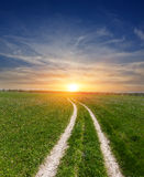Dirt road in steppe on sunset Stock Photography