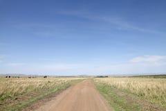 Dirt road and the stretching savannah grassland of Masai Mara National Park Stock Photos