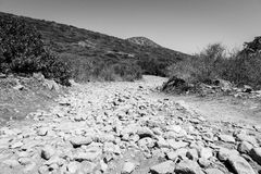 The dirt road strewn with large stones. Royalty Free Stock Photo