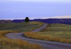 Dirt road sunset